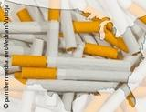 Graphic: Outlines of USA filled with cigarettes