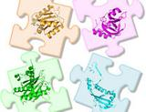 Photo: Puzzle pieces