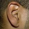 Photo: Ear; linked to