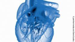 Bild: Darstellung von einem Herz in blau; Copyright: panthermedianet/dariostudios