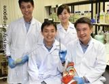 Photo: Researchers from Singapore with a heart model