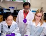 Photo: Three researchers in the lab