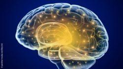 Bild: Computergrafik eines Gehirns, in dem Nervenzellen hell leuchten; Copyright: panthermedia.net/alexmit