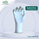 Surgical Glove (Polyisoprene)