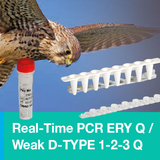 BAG Diagnostics ERY Q and Weak D-TYPE 1-2-3 Q – precise blood group typing with real-time PCR!