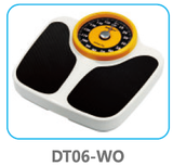 DT06 WO