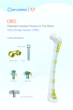 Ortho-Bridge System