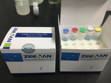 SARS-CoV-2 Test Kit(Real-time PCR)-Liquid