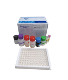 Qualitative Diagnostic Kit for Novel Coronavirus (2019-nCov) IgM/IgG Antibody (ELISA)
