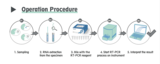 Wondfo PCR Procedure