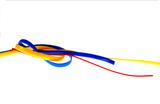 Vessel Loops