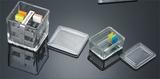 Slides Staining Jar for 10 pieces Slides 10片