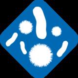 Influenza-B-Nukleoprotein, Antikörper