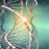 STAT-NAT HIV DNA