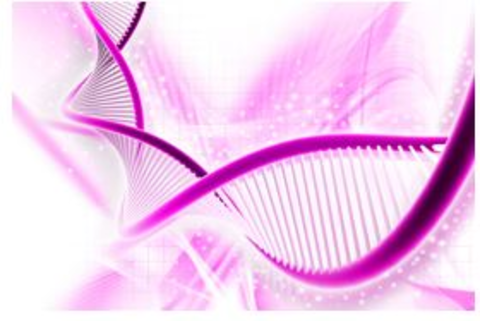 RT.PCR