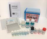 ELISA-Screening-Tests