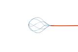 Nitinol Six Wire Tipless Stone Basket