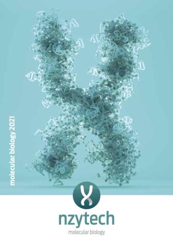 Molecular Biology_2021.pdf