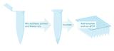 PCR-Dekontaminationskit