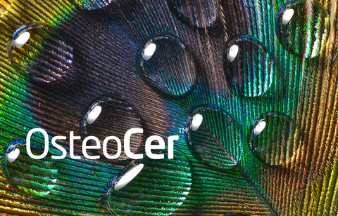 OsteoCer - Bone growth promoting coatings