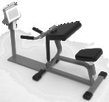 Biceps Curl Trainer